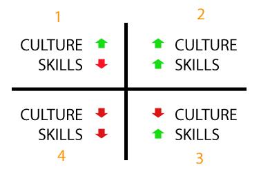 Culture-Skills